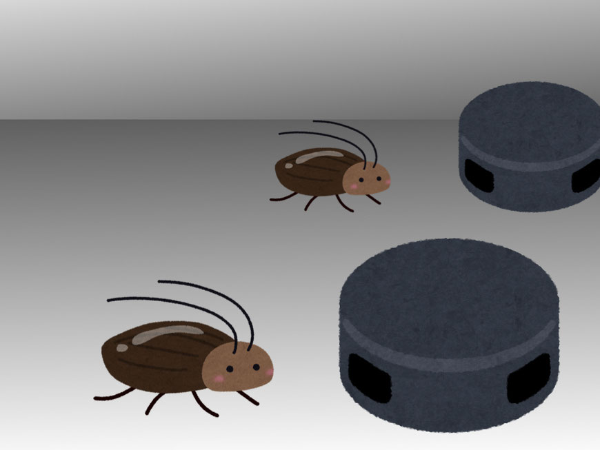 毒餌タイプの駆除剤に近づくゴキブリ