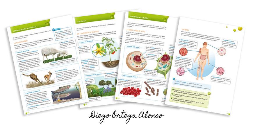 Diego Ortega Alonso ilustraciones Editorial Edelvives Ciencias Naturales y Sociales