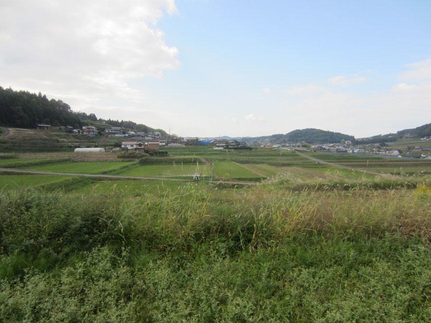 建設地からの田園風景