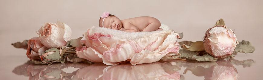 Newborn Baby Fotoshooting Wien Babyfotos Babyfotograf Ankica Moradi