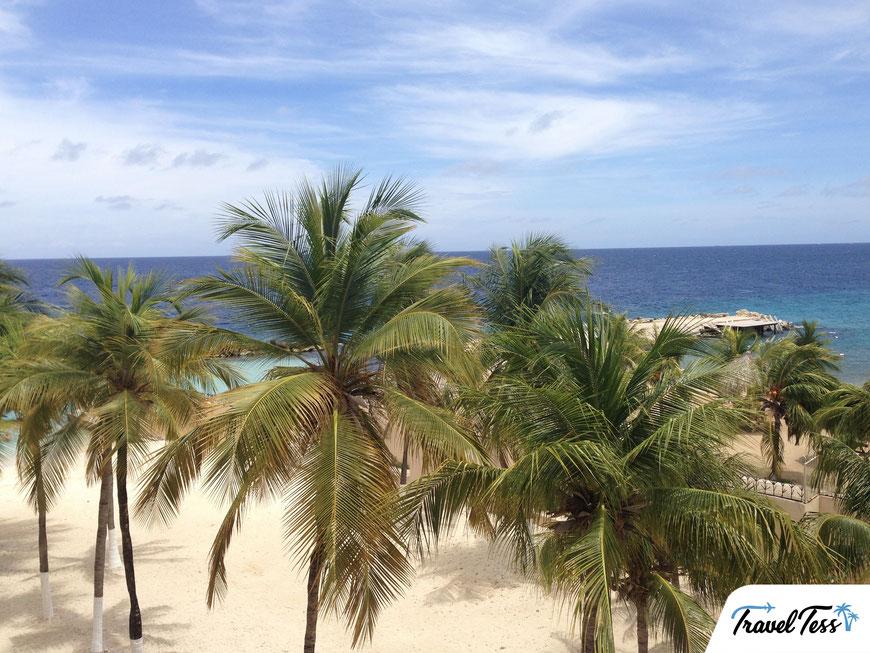 Palmbomen, strand en zee op Curaçao