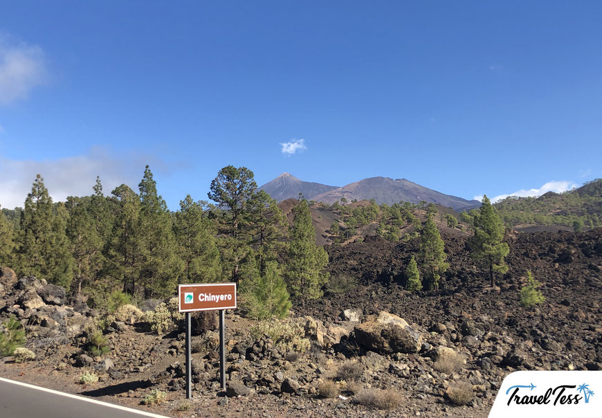 Chinyero vulkanisch gebied