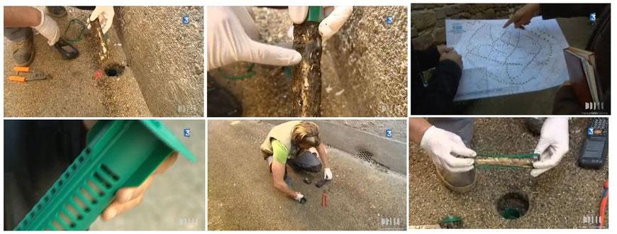 Visite de chantier contre les termites à Monestiés, Sentri Tech à l'honneur sur France 3