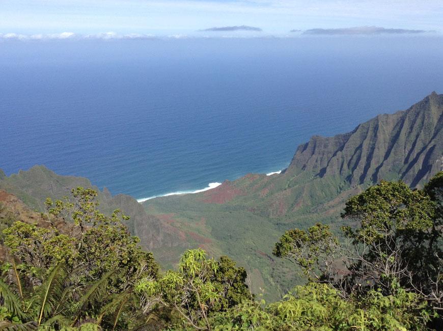 Het Hawaiiaanse eiland Kauai, uitzicht vanaf de kliffen van de Npali Coast