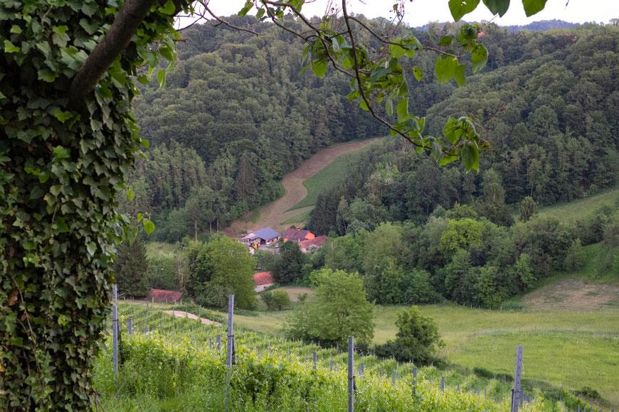Vaizdas nuo Vuglecų kalno Kroatijos Zagorėje