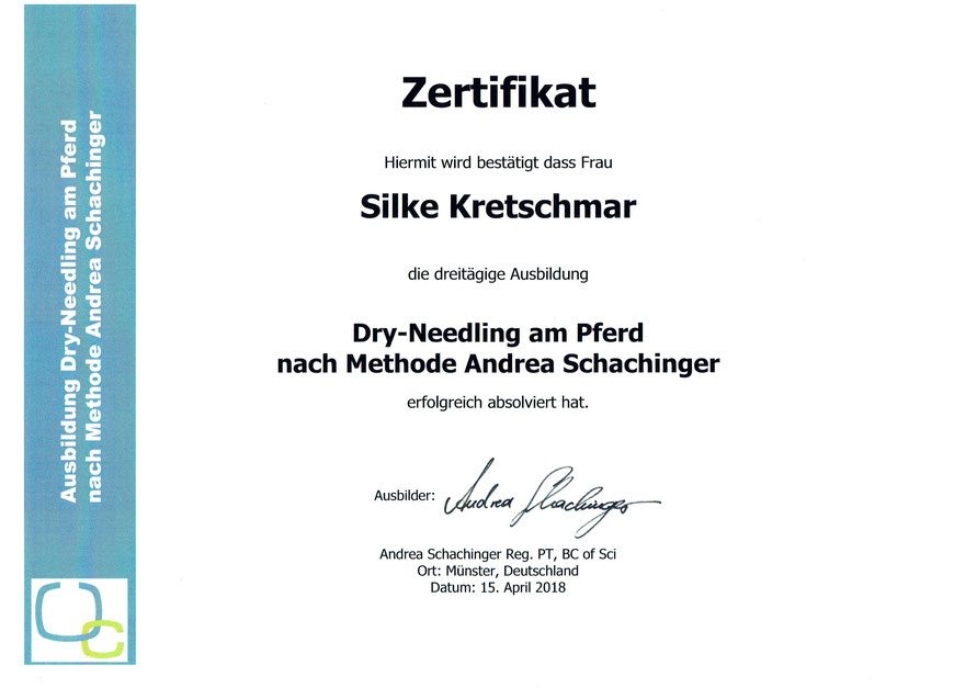 Zertifikat der Dry Needling Fortbildung nach Schachinger