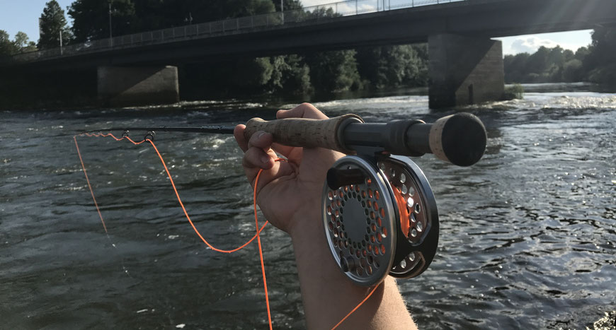 danica dudes fly fishing blog - fishing for asp in Bavaria, germany