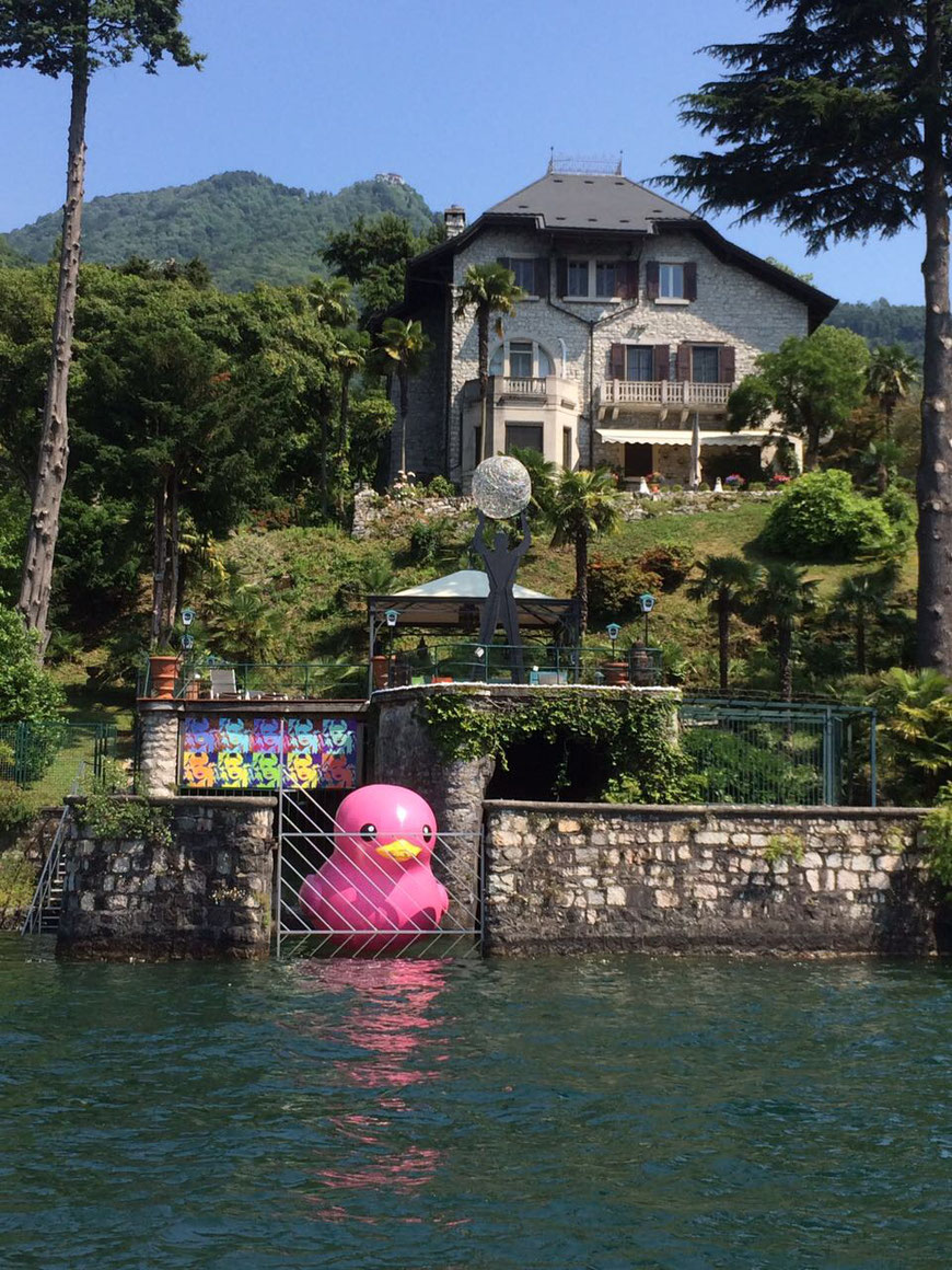 Ente Lago Maggiore