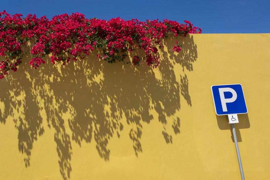 """Foto de la práctica: """"color y composición"""""""