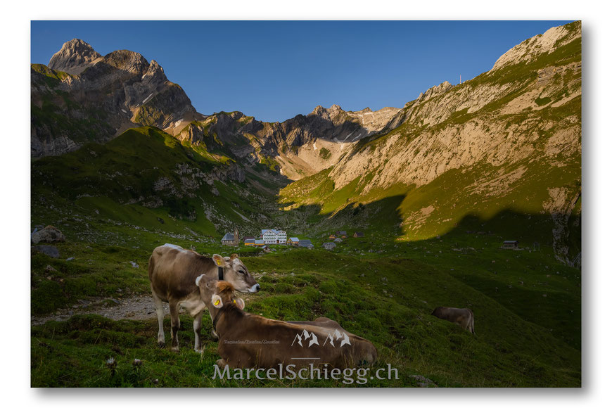 Meglisalp, Berggasthaus Meglisalp, Marcel Schiegg, Alpstein, Appenzell, Appenzellerland, Roststeinpass, Altmann