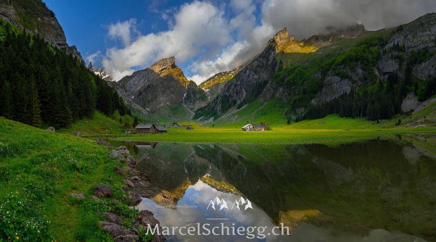 Seealpsee Art.-Nr. MS8-9012-Pan-Mai/2014