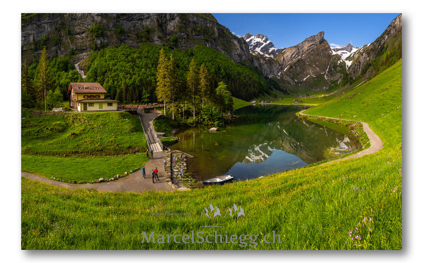 Seealpsee, Berggasthaus Seealpsee, Panorama, Alpstein, Appenzell, Appenzellerland, Marcel Schiegg, Frühling, Nebel, Natur, Berglandschaft