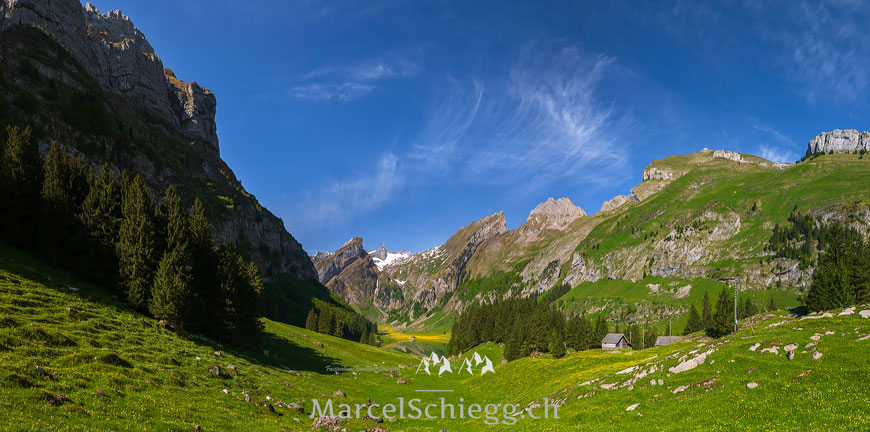 Seealpsee Art.-Nr. MS8-9447-Pan-Mai/2014
