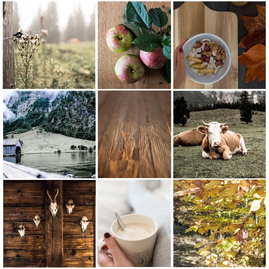 Fendt Holzgestaltung Bilder: Niederreiner Romina