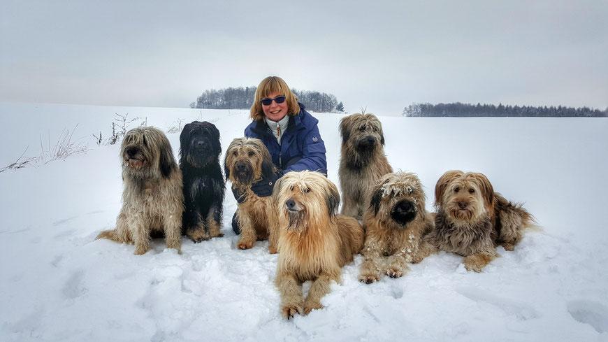 Unser Rudel im Februar 2017 - Benni, Lili, Aila, Ida, Ozzy, Otti und Maja