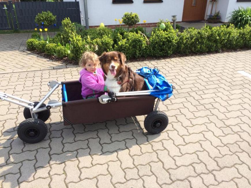 ulfBo - ein Bollerwagen für alle