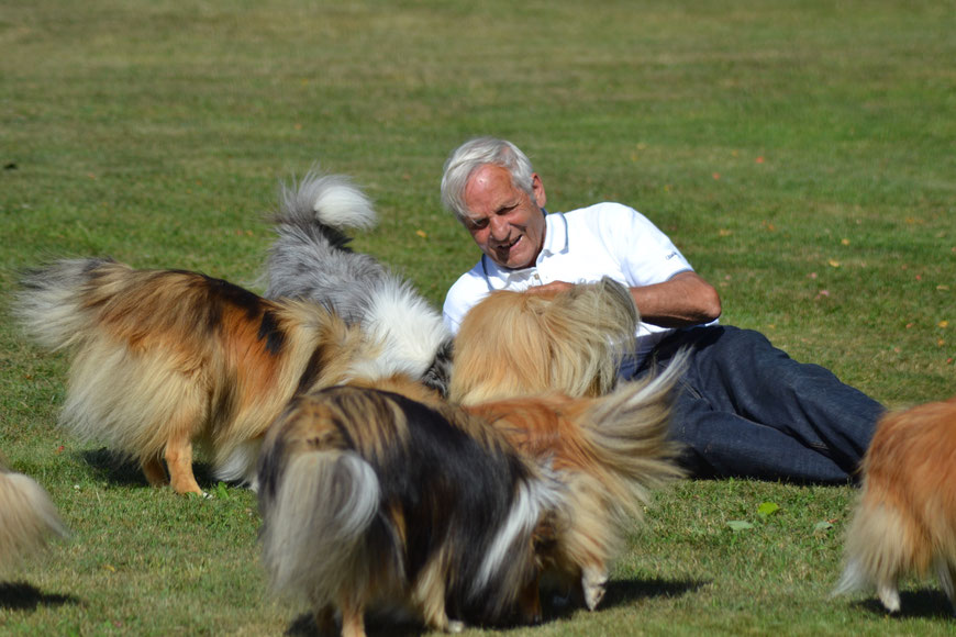 Derek Rigby surrounded by Lythwood and Lundecock Shelties, summer 2018 in Sweden. Photo: Ulrika Nordieng