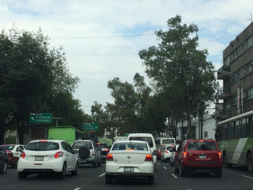 Au loin, des bus verts, bus faisant partie du réseau de transports publics de la ville