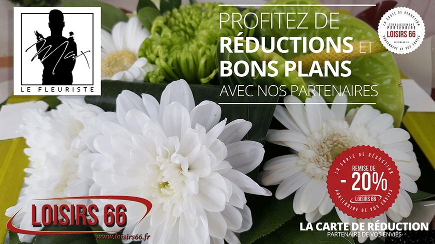Réduction MAX le fleuriste Loisirs 66