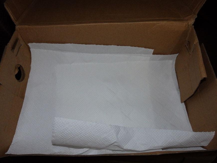 019年7月12日 ペットミッキンのインコヒナ用  ダンボール箱