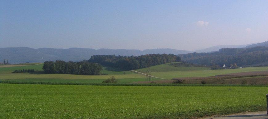 Blick von Westen auf das Gelände der 1999 geplanten Inertstoffdeponie im Schlattfeld