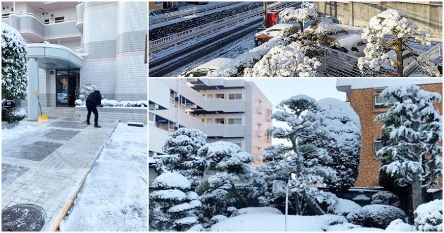 メゾンブランシュ 雪の様子