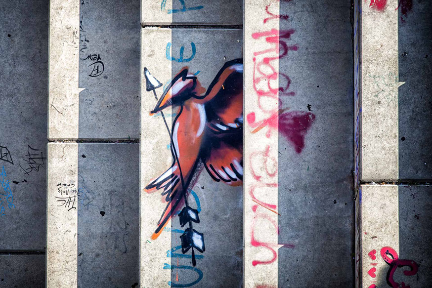 Graffiti Spottdrossel auf Treppe bei Tag in Magdeburg