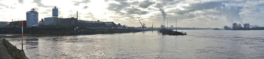 Foto der Hochwassersituation vom 05.02. Links im Bild Einfahrt Kultushafen, in der Bildmitte Einfahrt Südhafen mit Mole, Rechts der Rhein.
