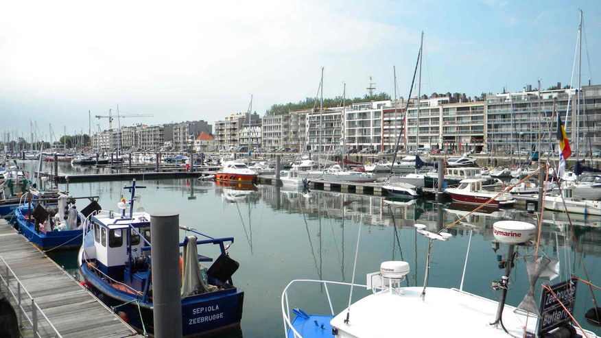 Marina in Zeebrügge