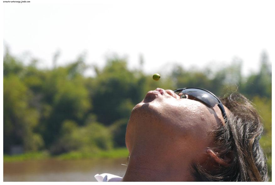 Der Gute hatte diese grüne Beere auf seine Lippen gelegt und hält sie nun pustenderweise in der Luft. Wie eine Schwebfliege hängt sie jetzt da.