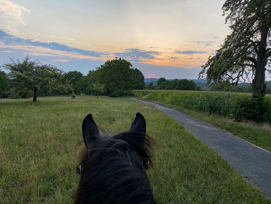 Willi und ich, unterwegs um 06.00 Uhr in den Sonnenaufgang