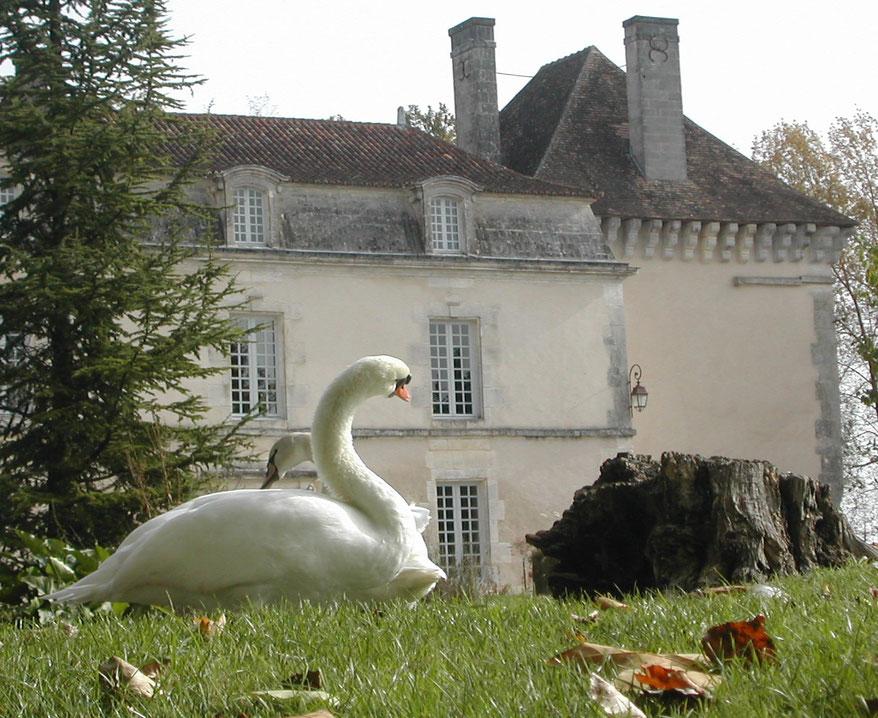 le château de Lignières-Sonneville