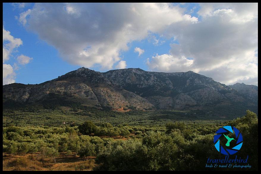 Blick vom Südufer des Aposelemis Stausees Richtung Berge