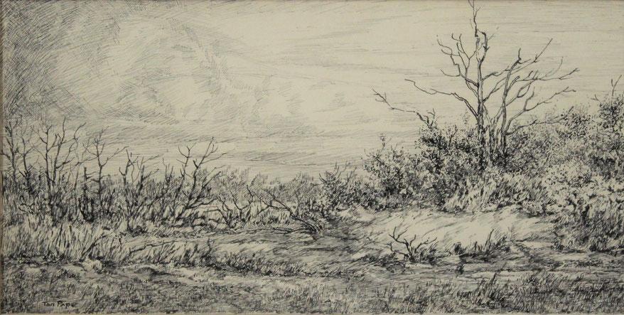 te_koop_aangeboden_een_inkttekening_van_de_nederlandse_kunstenaar_ton_pape_1916-2003