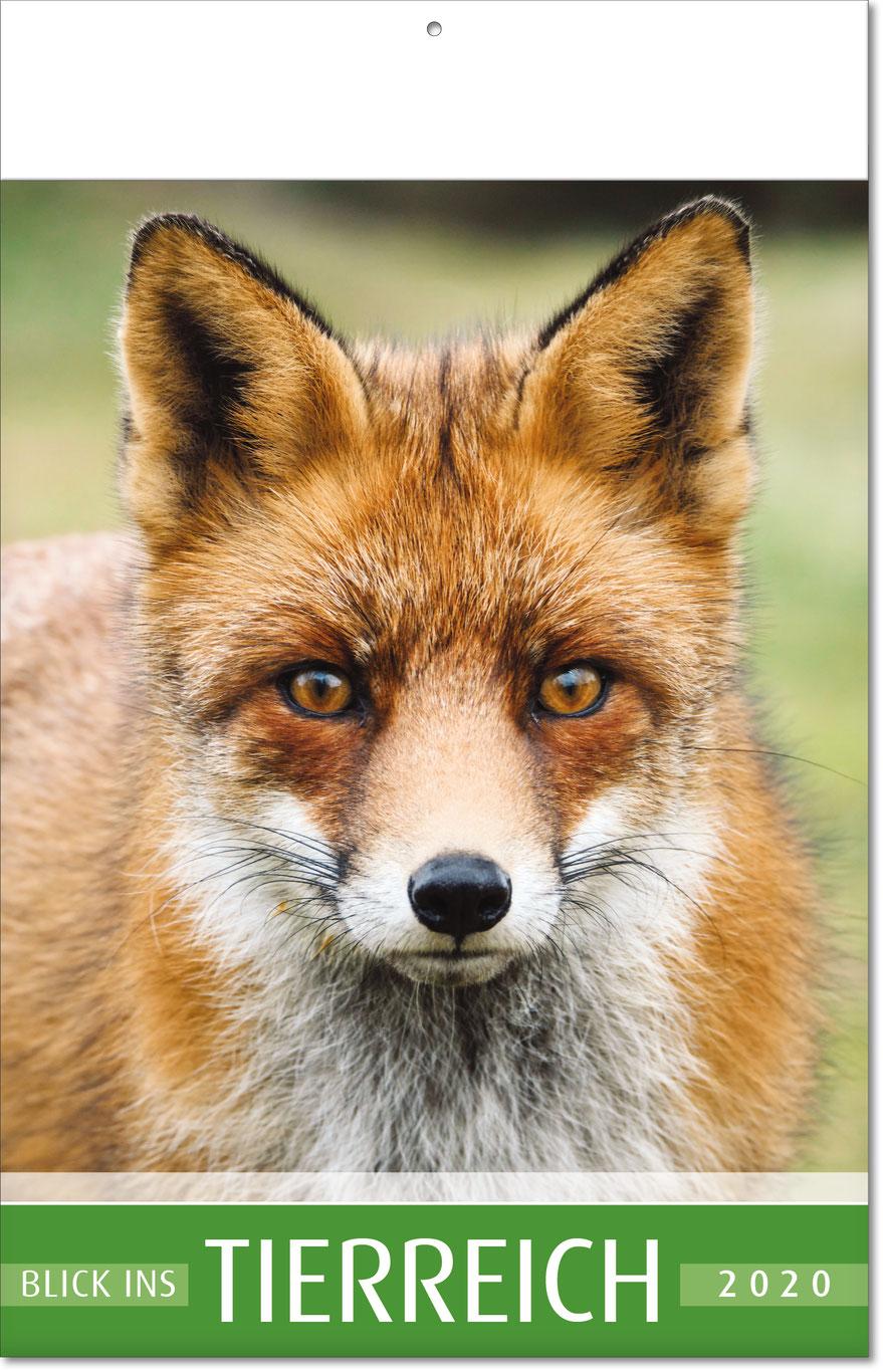 """Bildkalender """"Blick ins Tierreich"""" 2019"""