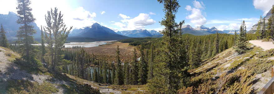 Howse Pass Viewpoint, Icefields Parkway, Banff Nationalpark, Alberta, Kanada