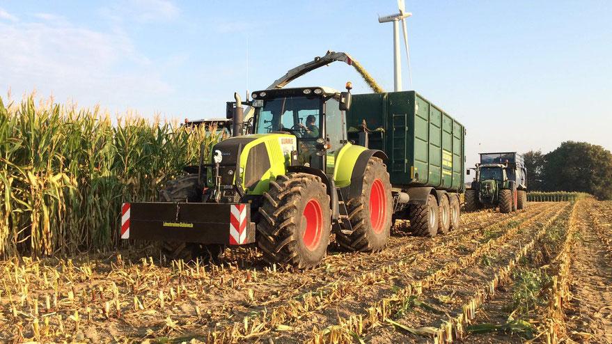 Das Bild zeigt die Maisernte und das Abfahren des Ernteguts.