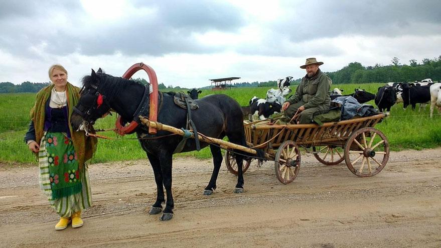 Skirmantė ir Česlovas važiuoja žemaituko traukiamu vežimu