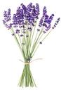 ラベンダーの花束