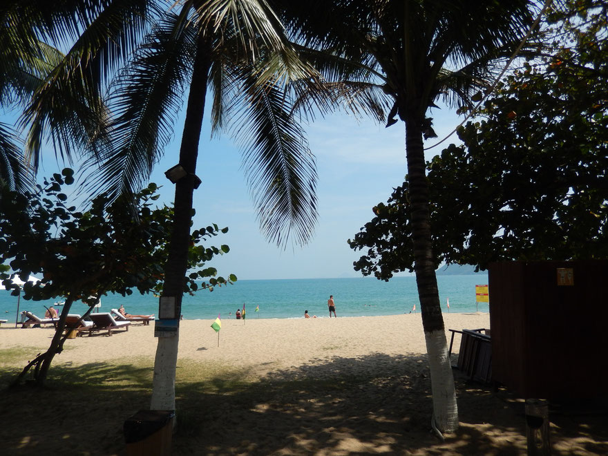 Nha Trang Beach with palms