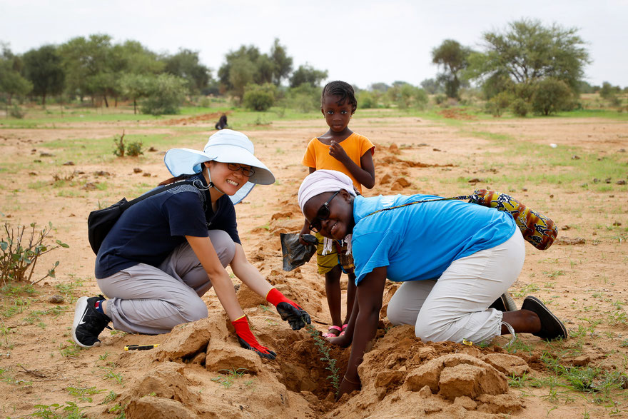 planting together senegal
