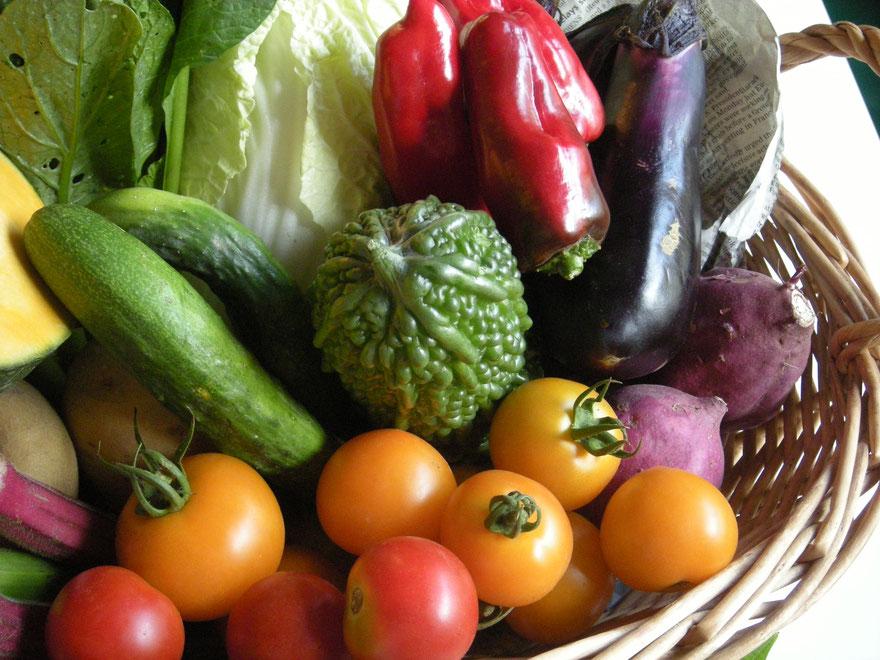 Women's Restaurant  地産地消で有機野菜を提供