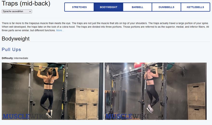 Muskel trainieren Übungen