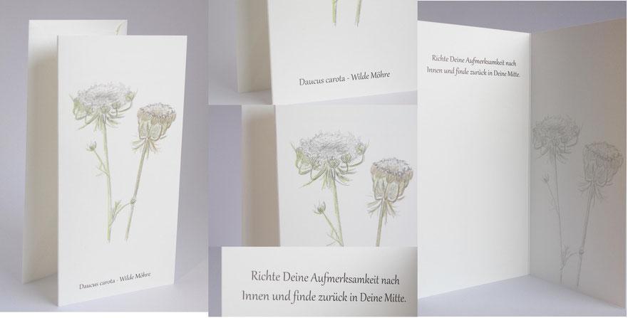 20 Karte Wilde Möhre