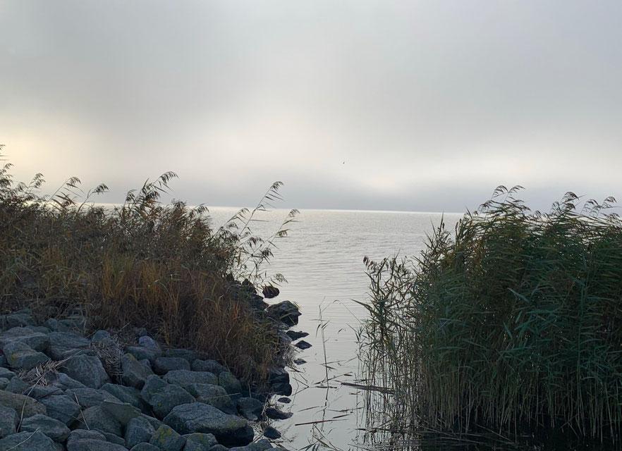 Balmer See im Morgennebel © Foto Peter Schmidt 112020