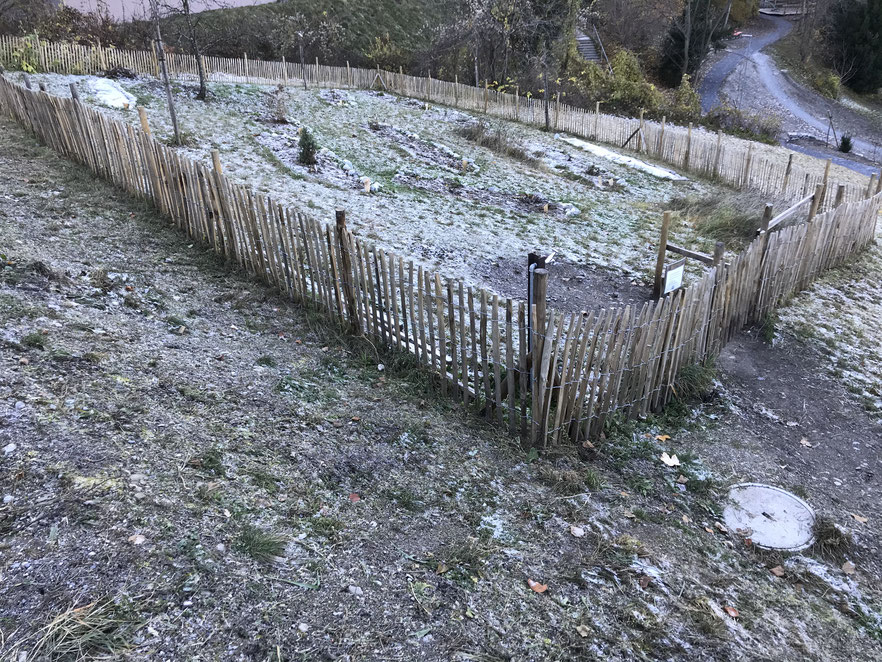 Winterruhe auf dem Hirschbühl - Dezember 2019