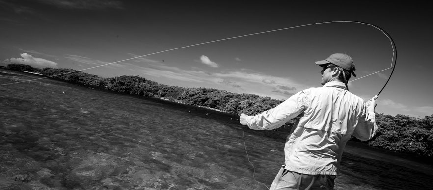 Fly fish Venezuela, FFTC.club saltwater destination, Los Roques, casting Fly Fishermen, Fly fish saltwater destinations for Jacks, Barracudas, Bonefish, Snapper, Snook, Bonitos.