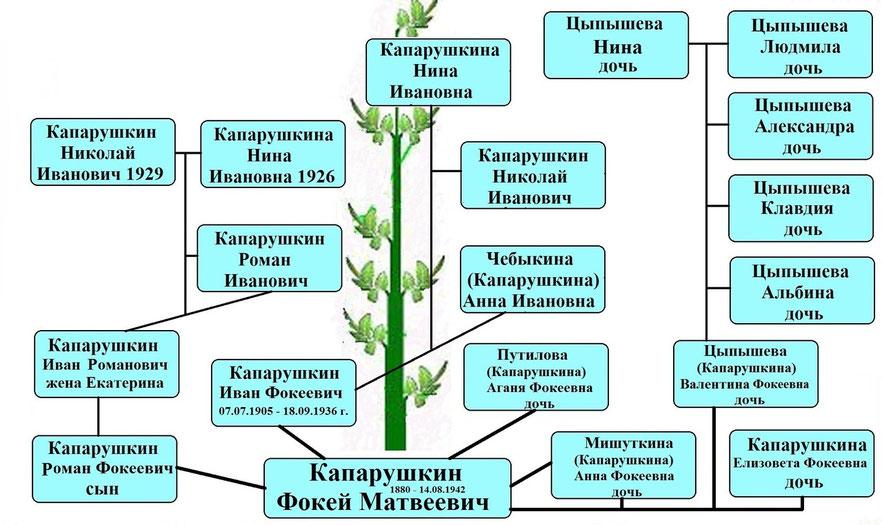 Древо рода Капарушкина Ф.М.