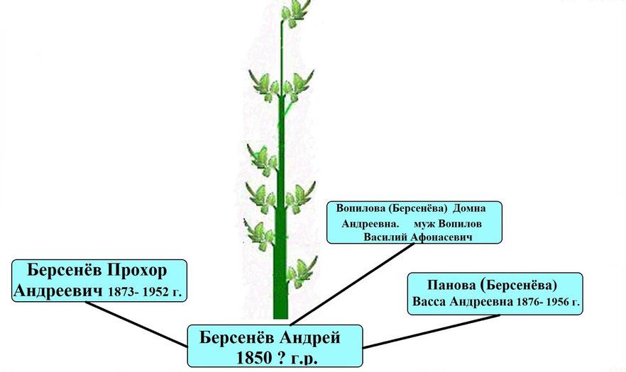Древо рода Берсенёва Андрея 1850?