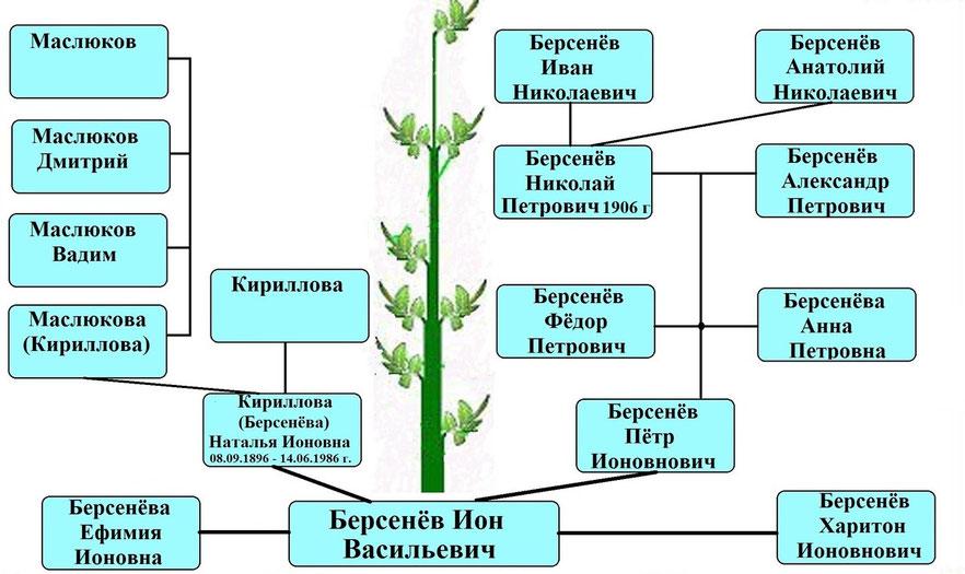 Древо рода Берсенёва Иона Васильевича